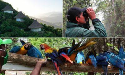 Lugares sostenibles para visitar en Colombia cuando estemos en la época pospandemia