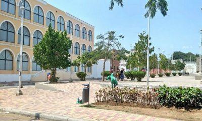 ¡Ejemplo! Barranquilla es elegida como una de las ciudades más arborizadas del mundo
