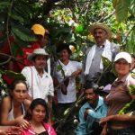 El emprendimiento con base en el cacao que apoya a más de 27 mil familias en Colombia