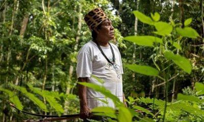 La comunidad indígena que con ayuda de Google defiende la Amazonía