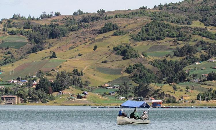 Campesinos e investigadores lideran proyecto para salvar el agua de la Laguna de Tota