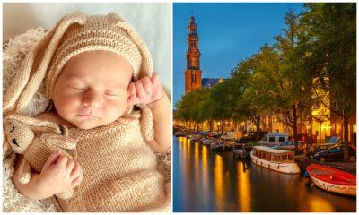 Sembrar un árbol por cada recién nacido, la alternativa de Ámsterdam para ayudar al medio ambiente