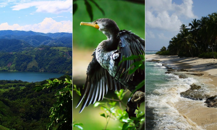 Destinos ecoturísticos que todo colombiano debería conocer, ¡disfruta tu país!