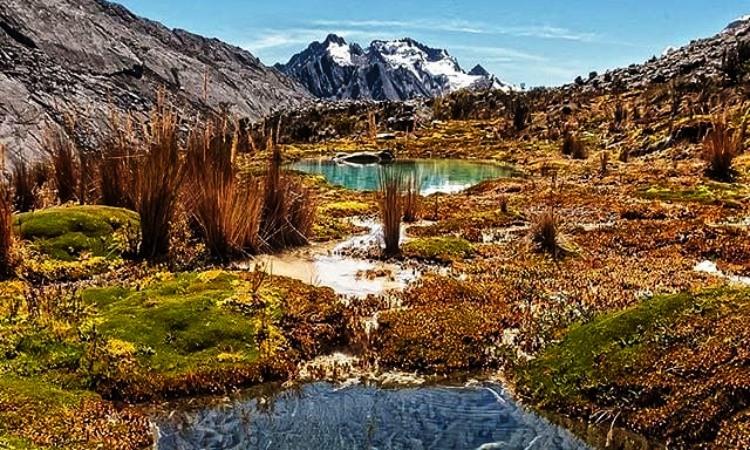 Nuevo proyecto pondrá a Colombia a la vanguardia en temas ambientales de interés mundial