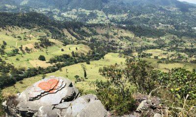 5 parques ecoturísticos que puedes visitar cerca a Bogotá