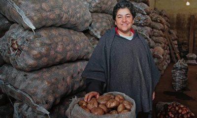 Colombia avanza en el Índice Global de Seguridad Alimentaria