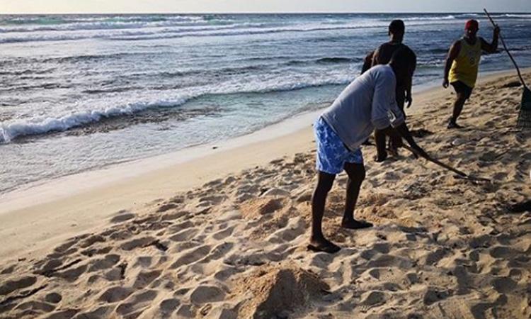 Senado de la República aprobó proyecto de ley que prohíbe el plástico en San Andrés
