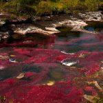 Conoce el increíble río de colores que hay en Colombia ¡No es Caño Cristales!