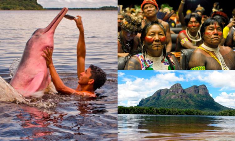 Por estos motivos los indígenas son fundamentales para combatir el cambio climático