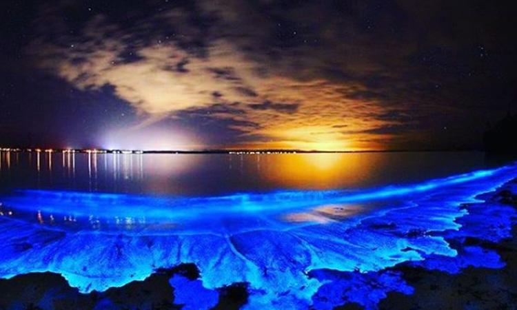 Como estrellas de mar, así es la hermosa playa que se encuentra en Colombia
