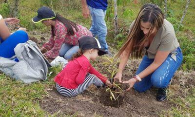 Esta iniciativa planea plantar 180 millones de árboles en los próximos cuatro años ¡hay que apoyarla!