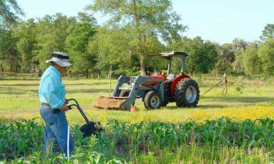 Campesinos colombianos podrán mejorar sus proyectos agrícolas gracias a la inversión de país europeo La Nota Positiva
