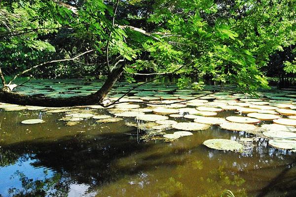 5 de los destinos ecoturísticos más importantes que tiene Colombia La Nota Positiva