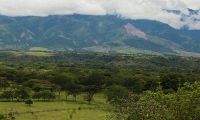 Colombia se comprometerá a reducir un 50% la deforestación para el 2022 La Nota Positiva