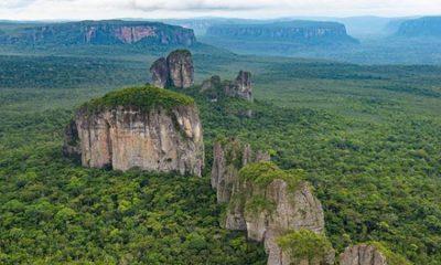 Colombia firmará el Acuerdo Escazú, para proteger a los líderes ambientales del país La Nota Positiva