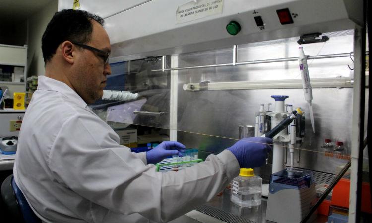 Colombianos realizan investigaciones para combatir el cáncer de estómago