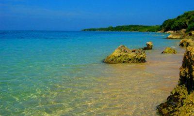 La isla colombiana que se quiere convertir en ejemplo ecoturistico