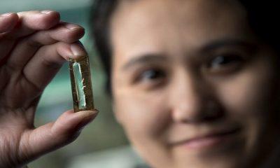 Joven estudiante de doctorado desarrolla batería que podría durar 400 años