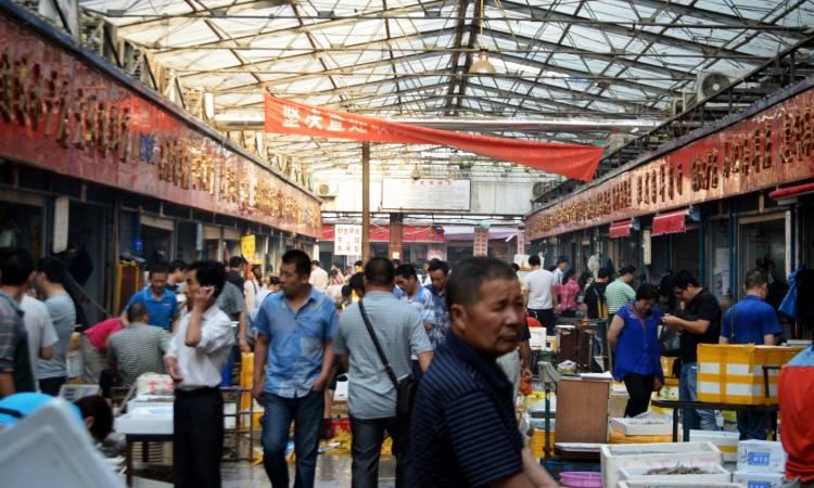 1.115 agricultores boyacenses recibieron insumos y planes para vender sus productos