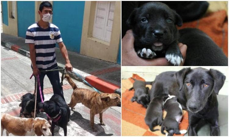De niño rescataba animales y hoy tiene un hogar de paso para perros de la calle
