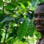 Colombiano recibió en Japón premio por la calidad del cacao que siembra en Tumaco 2