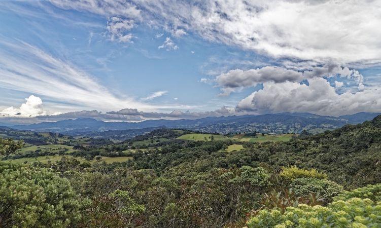 Colombia eliminará la producción de aislantes térmicos que agotan la capa de ozono