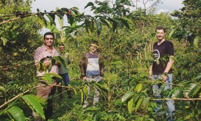 El colombiano que logró producir el café más lujoso y uno de los más caros del mundo