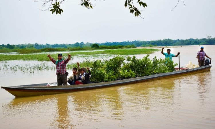 La campaña en Caquetá para apoyar a emprendimientos y reforestar la región amazónica