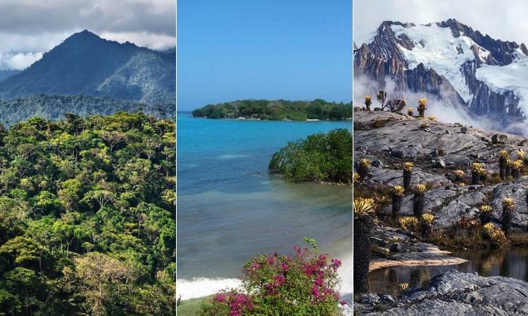 Colombia lidera la Lista Verde de áreas protegidas de la UICN en Latinoamérica