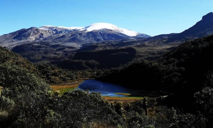 El Parque Natural Los Nevados es ratificado como sujeto de derechos por la Corte Suprema