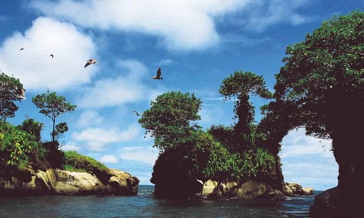 Colombia promueve el turismo de naturaleza con la publicación de una guía