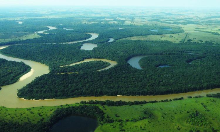 Colombia tendría el Parque Nacional Natural número sesenta y está en la Orinoquía