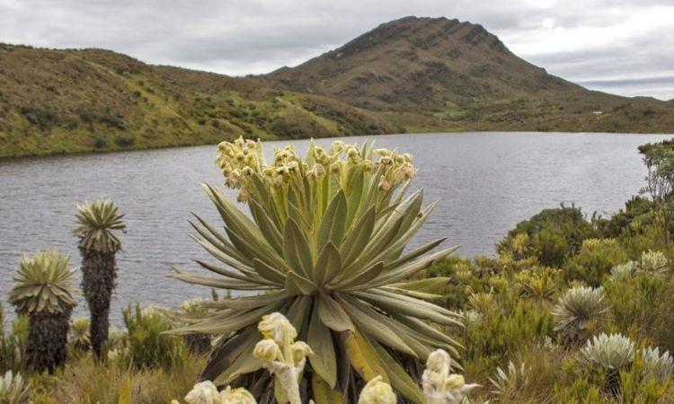 La conciencia ambiental del Boyacá un ejemplo a seguir en toda Colombia