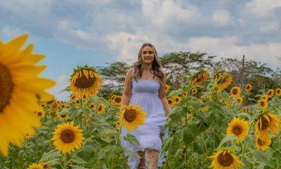 Con grandes campos de girasoles, los Montes de Maria se impone en turismo