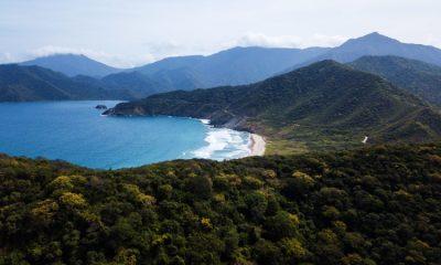 Colombia fortalecerá las capacidades institucionales para atacar la deforestación