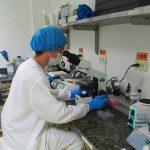 Producir vacunas para Latinoamérica es la meta de un laboratorio en Colombia