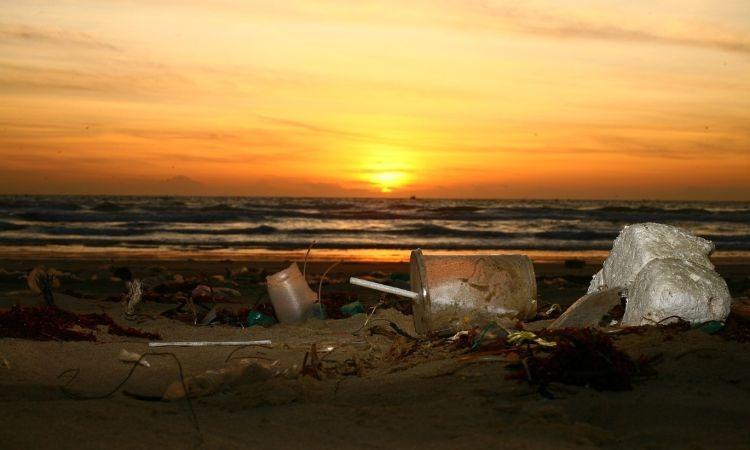 Playas libres de plástico, un proyecto que avanza firme en el Senado
