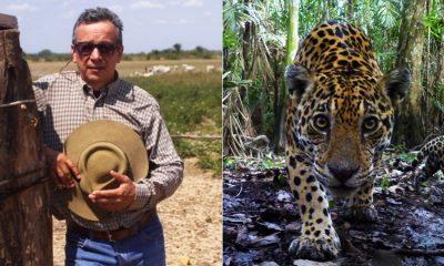 Ganadero colombiano se convirtió en el protector del jaguar, ¡lo adora!