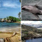 Colombia lanza su guía de turismo de naturaleza, una forma de conocer el país