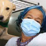 En Cali inauguran guardería para mascotas de habitantes de calle