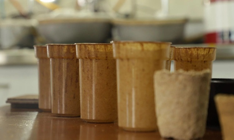 En Medellín crean vasos biodegradable con residuos de café